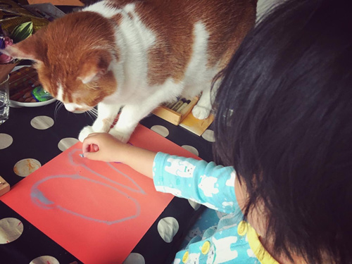 Saori Mochizukiの猫