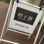 橙子猫(ORANGE CAT)@早稲田大学国際文学館村上春樹ライブラリー